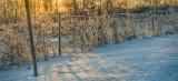 DSC08990 - hiver quebec.jpg