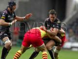 Ospreys v Perpignan16.jpg