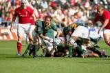 Wales v S.Africa3.jpg