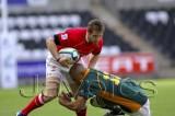 Wales v S.Africa4.jpg
