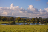 Autumn at Woburn