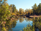 Calgary Inglewood Bird Sanctuary