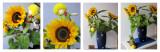 Sunflowers 33