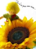 Sunflowers 37