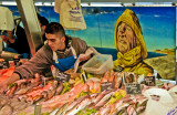 Fresh fish from Mediterranean Sea at your choice....