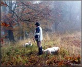 2009 11 07 Hunting (13).jpg