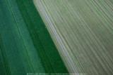 2008-08-06_207.jpg