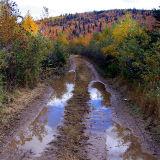 Le chemin de bois , Petite Rivière St-François
