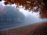 la brume d'automne