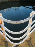 le coin du bassin