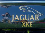 le photographe attaqué par Jaguar