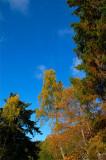 18th October 2008  October