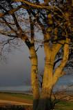 21st October 2008  last seconds of sunlight