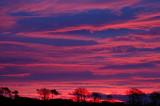 16th December 2008  pink sky