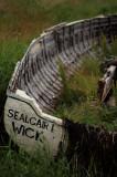 7th July 2008  Sealcair