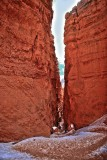 Quintessential Masculinity:Masculinité quintessencielle:精华阳刚之气:Bryce Canyon