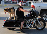 Dog on a Hog