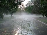 harwitch road after hailstorm.jpg