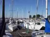 Stockton Sailing Club harbor, 07:49 (155)
