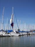Sir Leansalot at dock, 10:12 (173)
