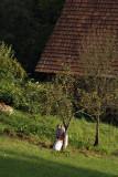Samoborsko Gorje