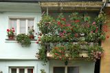 House in Tetovo