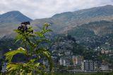 Gjirokastra from the Drinos Valley
