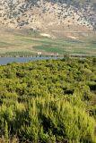 Butrint - Lake Bufi