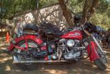 SDIM6765_6_7 - Harley Panhead