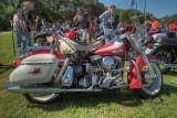 SDIM6825_6_7 - Harley Panhead