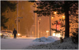 081123__3c23312_snow_and_a_bunny