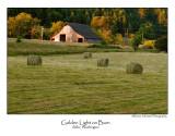 Golden Light On Barn.jpg