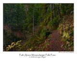 Path Above Weisendanger Falls Pano.jpg
