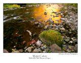 Water Colors.jpg