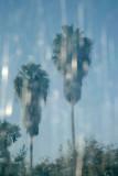 California reflection