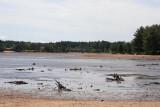 Lake Delton Disaster