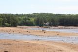 Dry lake Delton 2.JPG