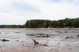 Dry lake Delton 5.JPG