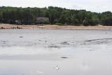 Dry lake Delton 14.JPG
