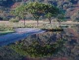 Crummock Water at Dawn DSC_6348