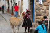 Girl in traditional clothes hunting for tourists with a llama