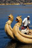Twin dragon hulled reed boat