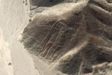 Nazca Lines Aerials, Peru