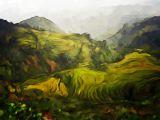 rice-paddies.jpg
