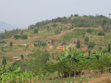 On the way to Nyungwe Forest