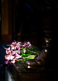 Flowers at Cenataph