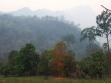Doi Chiang Dao
