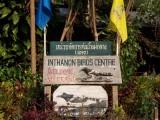 Mr. Daeng's 'Birds Centre', Doi Inthanon