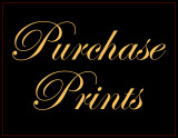 Print Purchasing Information