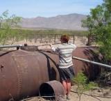 Martina avoids bees at water tank
